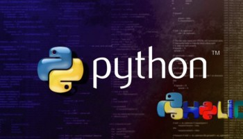 How to Check Web page for SEO Using Python – Byte Sized Hacks of